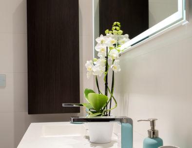 salle-de-bain (3)